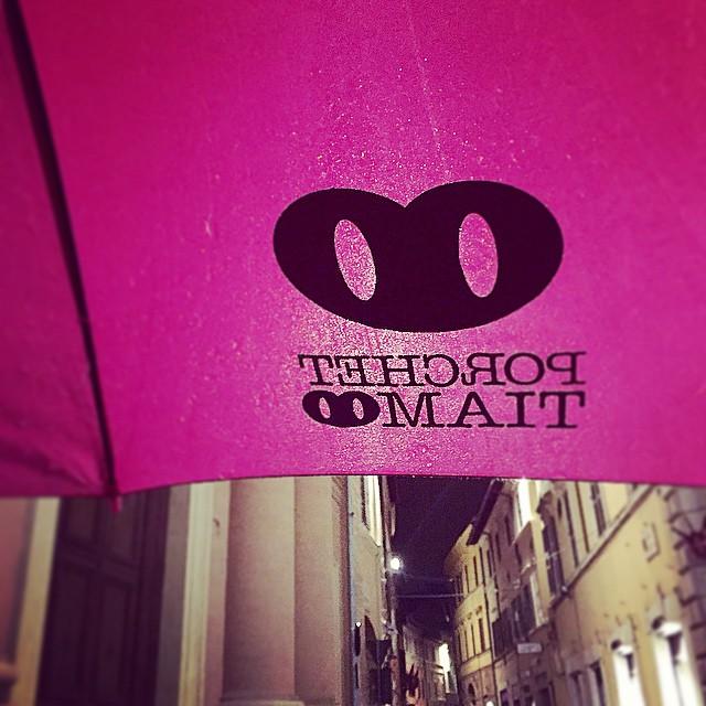 Anche quando piove teniamo sempre il naso all'insù  #thinkpositive #porchettiamo