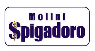logo spigadoro